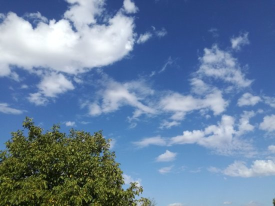 aria fresco